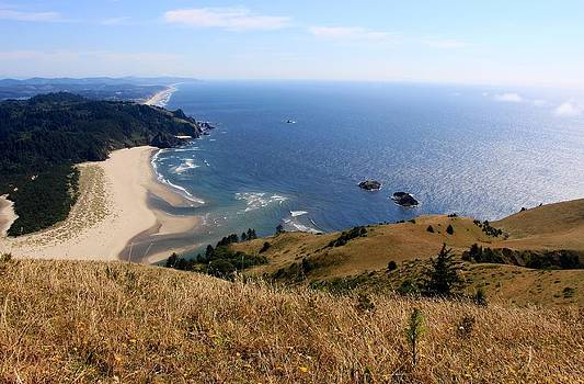 Cascade Head by Tim Rice