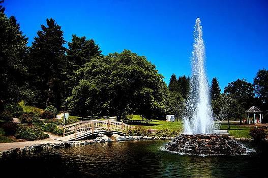 Cascade Park by Joshua Towne