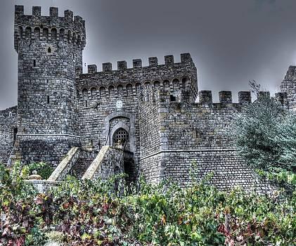 Castle in the Vineyard by Deborah Knolle