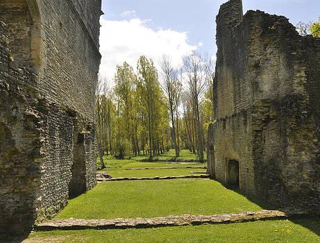 Castle by Tanis Crooks
