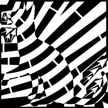 Cat Attack Maze by Yonatan Frimer Maze Artist