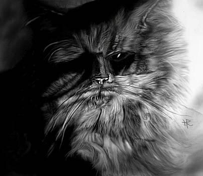 Cat Ballou by Herbert Renard