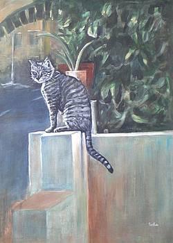 Usha Shantharam - Cat Basking in the Sun
