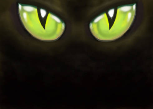 Cat Eyes by Kevin Middleton