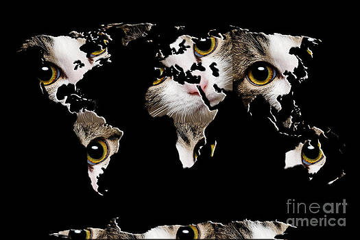 Andee Design - Cat Eyes World Map 2