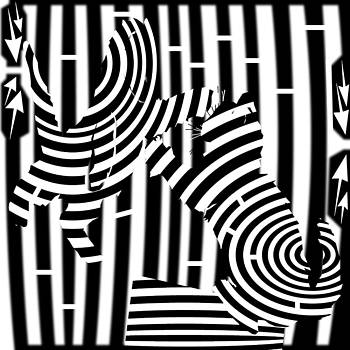 Cat Fight Maze by Yonatan Frimer Maze Artist