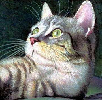 Cat Friendly by JAXINE Cummins
