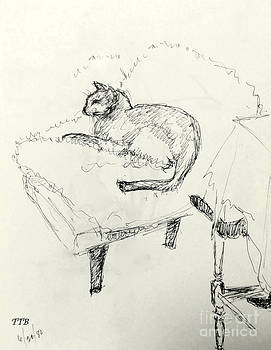 Art By - Ti   Tolpo Bader - Cat Heaven
