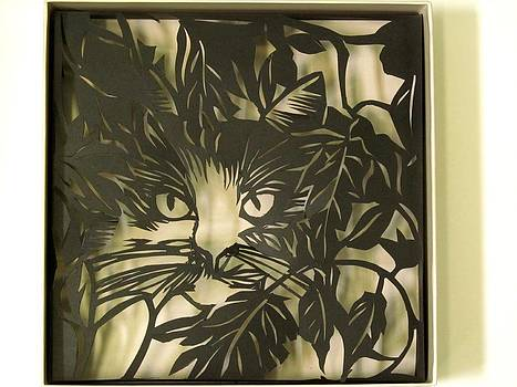 Alfred Ng - cat in a box