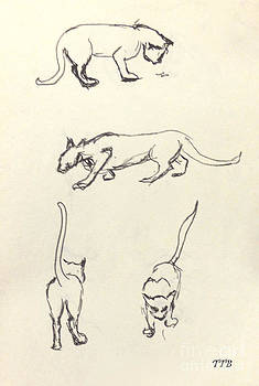 Art By - Ti   Tolpo Bader - Cat Lines