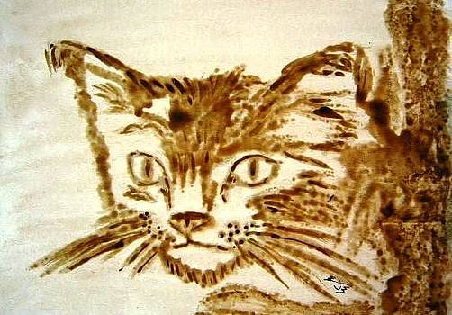 Cat by Mona  Bernhardt-Lorinczi