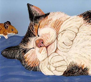 Cat Nap by Karen Howell
