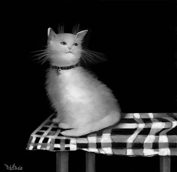 Cat on Checkered Tablecloth   No. 3 by Diane Strain