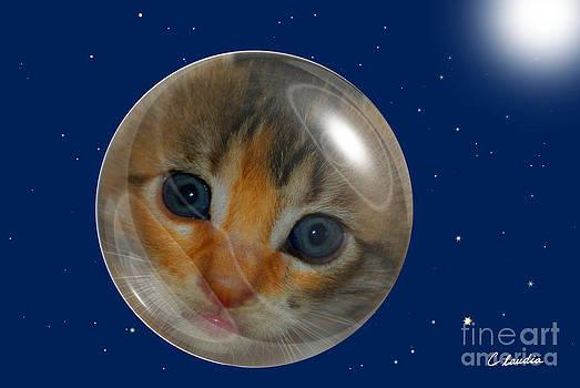 Cat Planet by Claudia Ellis