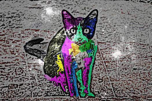 MS  Fineart Creations - Cat Pop Art