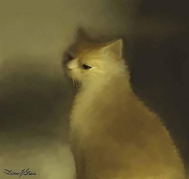 Cat Portraiture by Diane Strain
