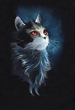 Cat Spy by Naushad  Waheed