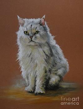 Cat by Tony Calleja