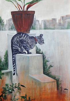 Usha Shantharam - Cat