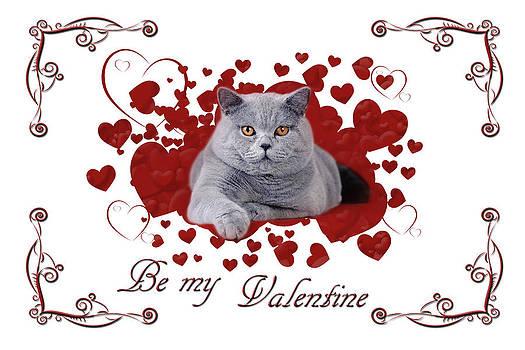 Waldek Dabrowski - Cat Valentine card