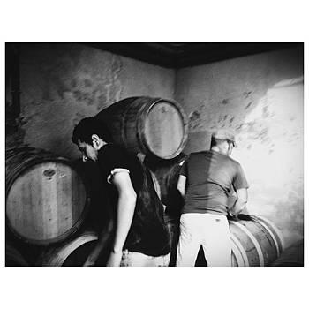 #catalunya #catalunyasud by Joan Ramon Bada