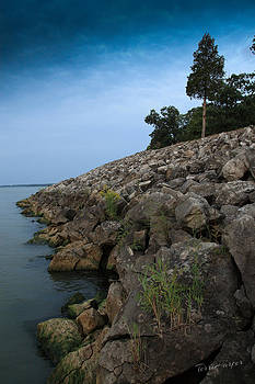 Catawba Point Shoreline by Terri Harper
