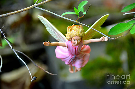 Linda Rae Cuthbertson - Catch Me - Woodland Fairies