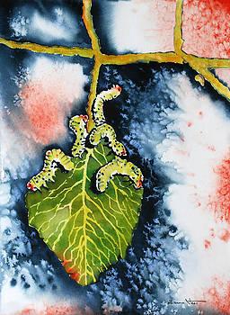 Caterpillars by Zuzana Vass