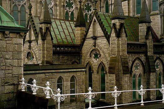 Cathedral Of Cork  by Carolyn Marchetti