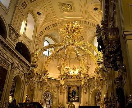 Veronica Vandenburg - Catholic Church on the Inside