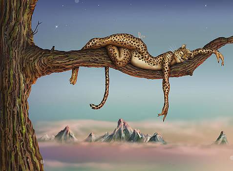 CatNap by Haley Gresham