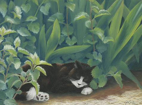 Catnip Cat Nap by Gale Smith