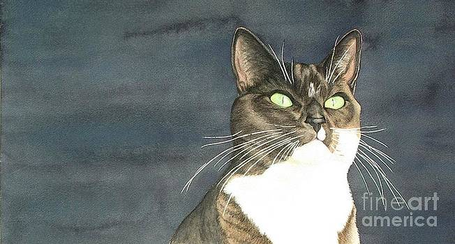 Cats eyes by Lesley McVicar