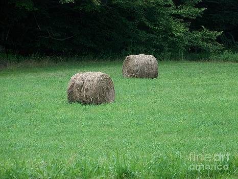 Catskill Mountain Haystacks by Kevin Croitz
