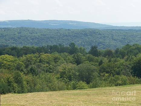 Catskill Rolling Hills by Kevin Croitz