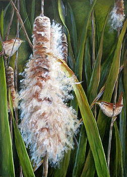 Cattails and Wrens by Mary McCullah