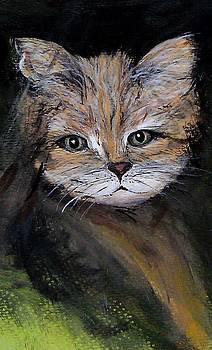 Cattitude by Marcia Crispino