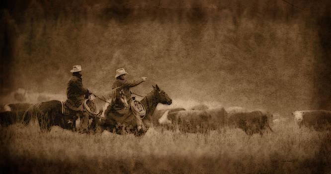 Scott Wheeler - Cattle Drive