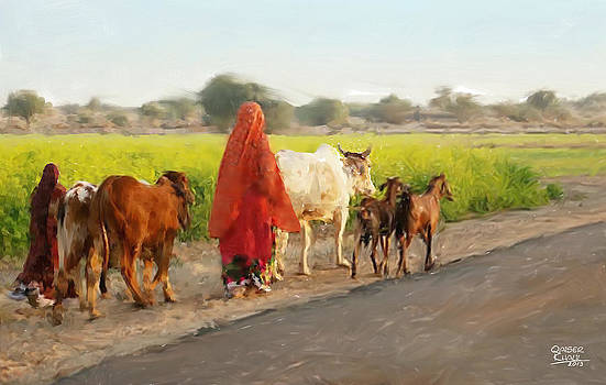 Cattle in the Fields by Qaiser Khalil
