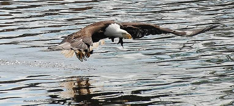 Caught Fish by Barbara Mundt