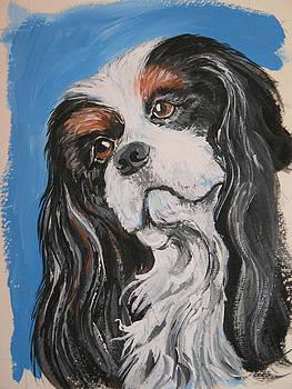 Cavalier King Charles Dog by Barbara Lightner