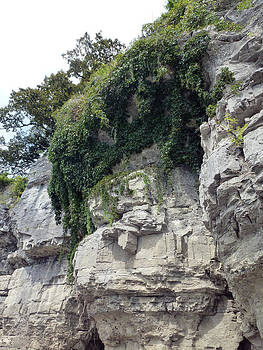 Cave-In-Rock Cliffside by Ami Clayton