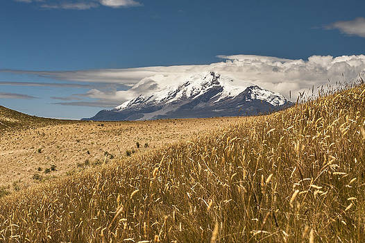 Cayambe volcano and Andes Paramo by Henri Leduc