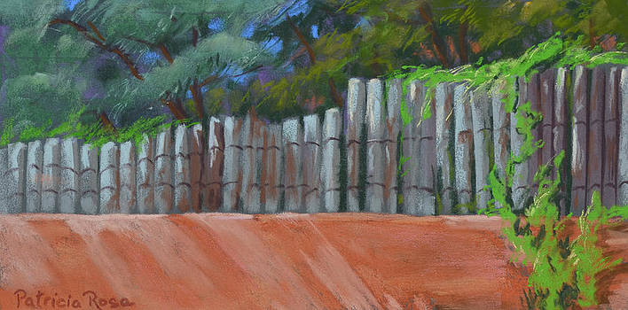 Cayote Fence by Patricia Rose Ford