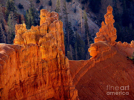 Cedar Breaks Hoodoos by Eva Kato