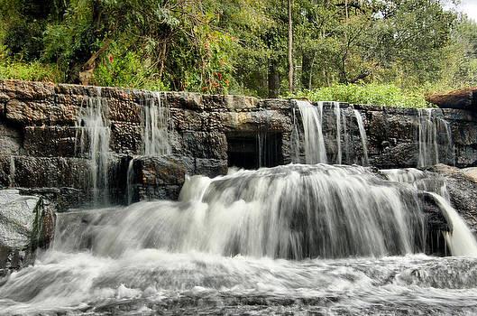 Cedar Falls by Thomas Taylor