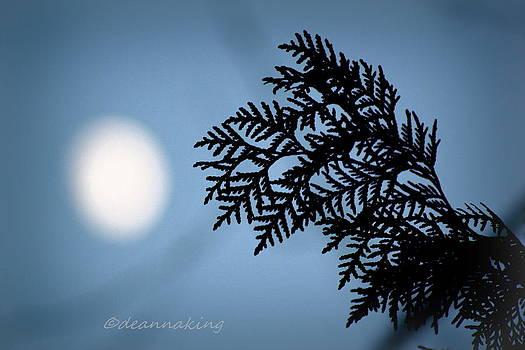 Cedar Moon by Deanna King