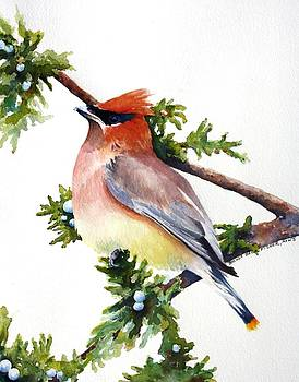 Cedar Waxwing by Brenda Beck Fisher