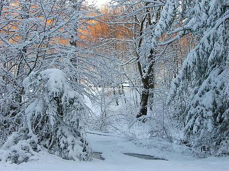Celbrate Winter by June Lambertson