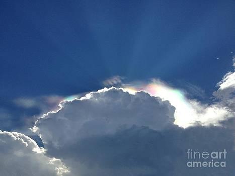 Celestial Beauty by Cindy Hudson